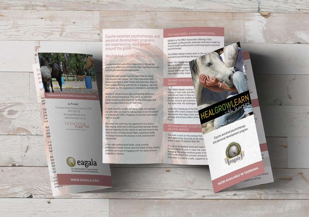 Download Eagala Brochure