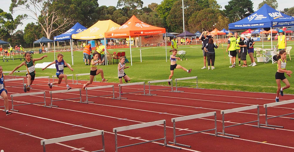 hurdle-heights-spacing-brightonlittleaths