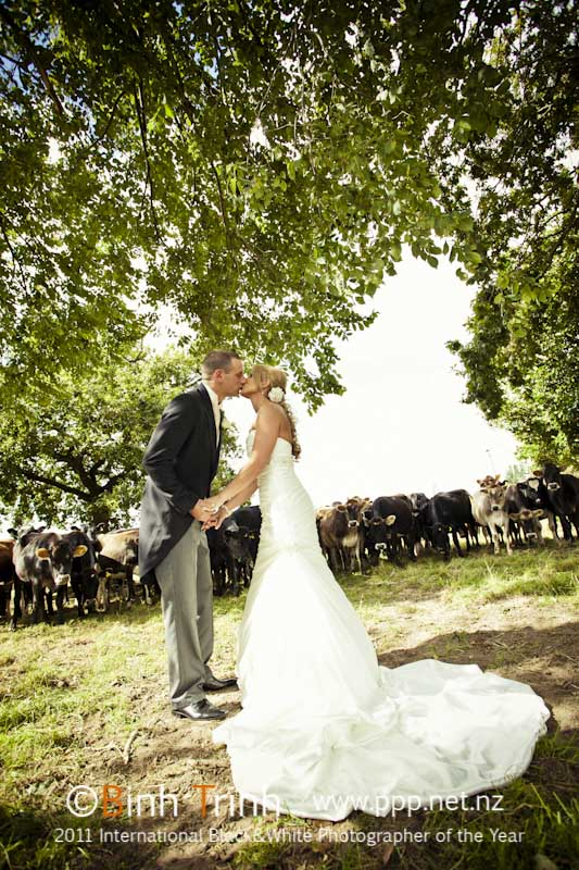 Country wedding | Featured Bride Holly | Photography by Bihn Trin | www.borrowedandblue.kiwi