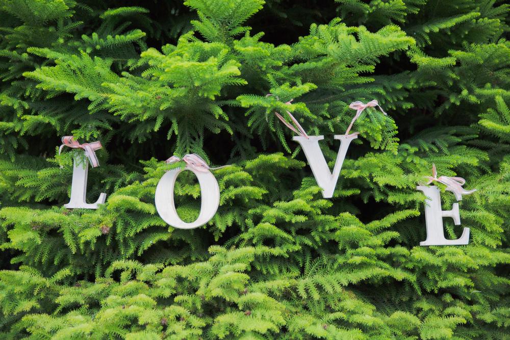 Wedding sign | Astra Bridal Featured Bride Courtney | Williams Photography | www.borrowedandblue.kiwi