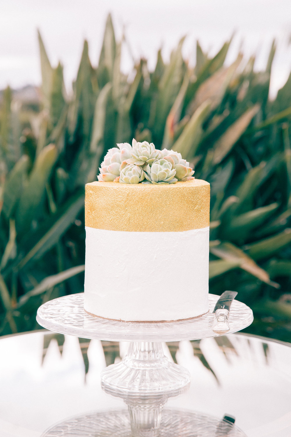 Modern style wedding cake | Modern bride inspiration | photography by Tinted | Dress from Astra Bridal | www.borrowedandblue.kiwi