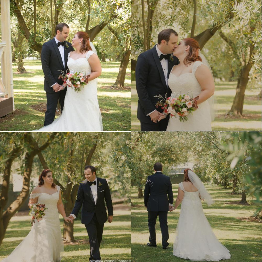 Amongst the olives | Bracu Olive Estate wedding | Astra bride Ariana | Photography Amanda Wignell |