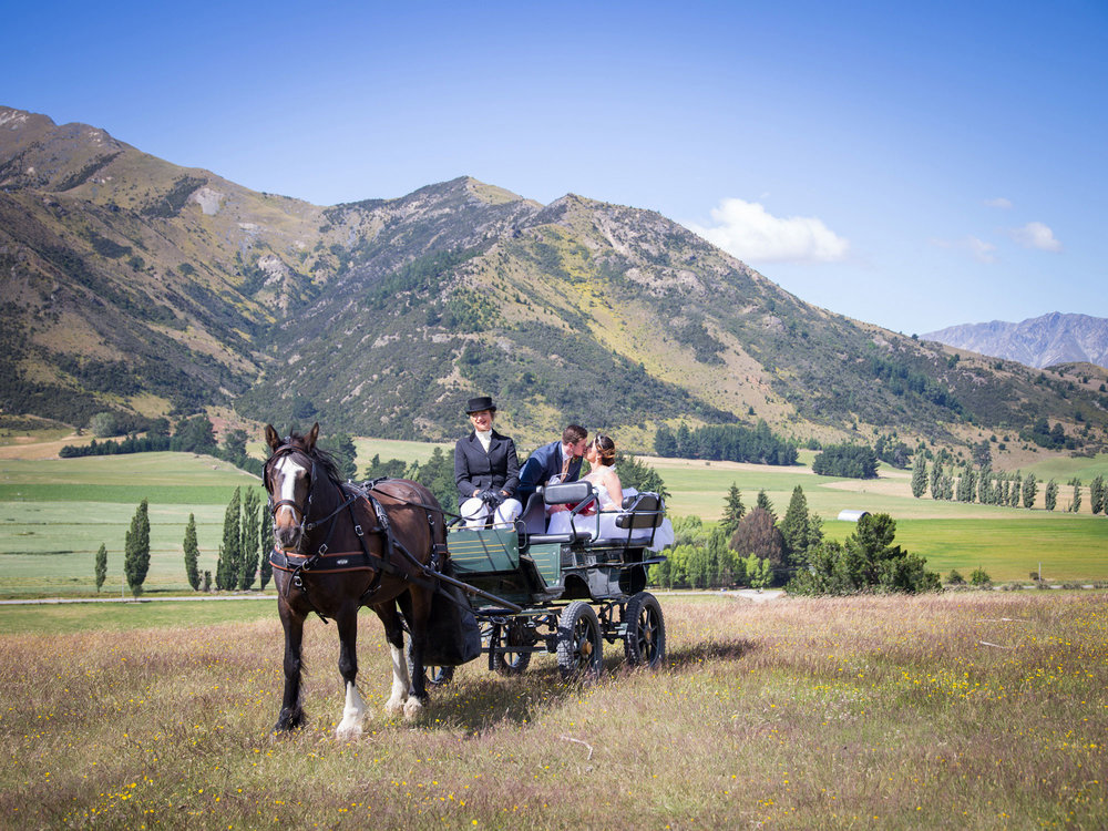 Horse and carriage | Astra bride Lu | Maggie Sottero Mindi | Lookout Lodge Wanaka | Peanut Productions Photography