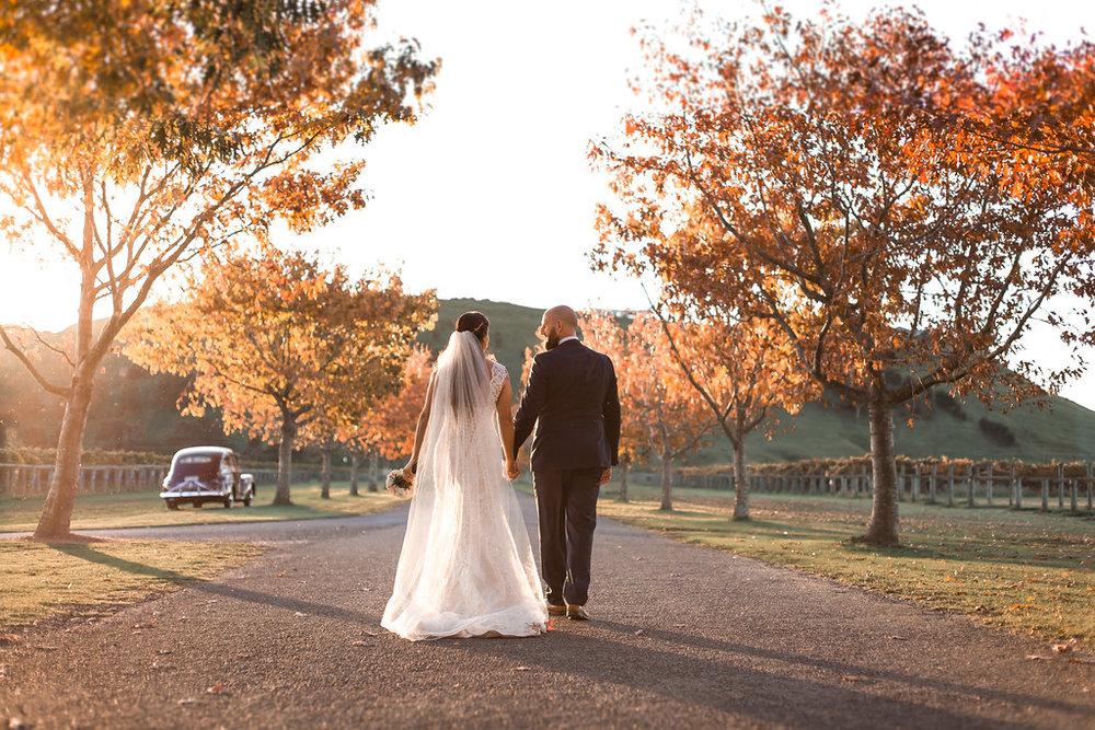 Romantic avenue | Astra bride Erin | Christina Rossi 4246 | Te Awa Winery | Josh Neilson Photography