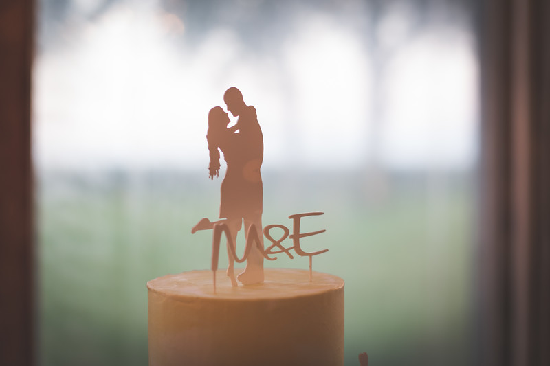 cake topper | Astra bride Erin | Christina Rossi 4246 | Te Awa Winery | Josh Neilson Photography