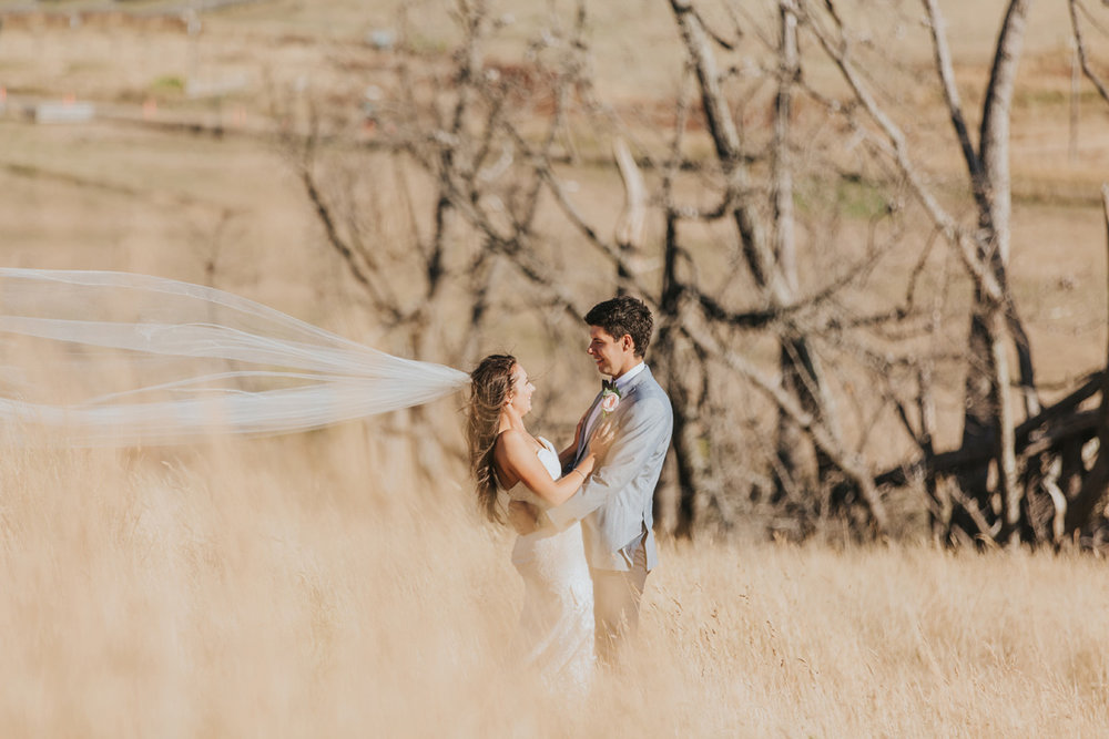 Long veil | Astra Bride Stacey | Maggie Sottero Mirian | Boho wedding at home | Tinted Photography