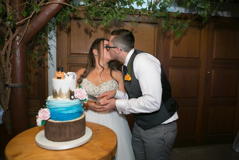 Character Wedding Cake | Markovina Vineyard Wedding | Astra Bridal | Maggie Sottero Esme | Dreamlife Photography
