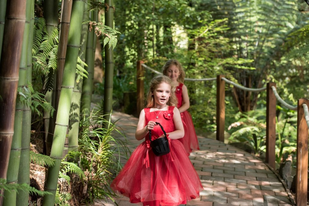 Flowergirls | Astra Bridal | Christina Rossi | Fountain Gardens, Te Puna | Jackie O Photography