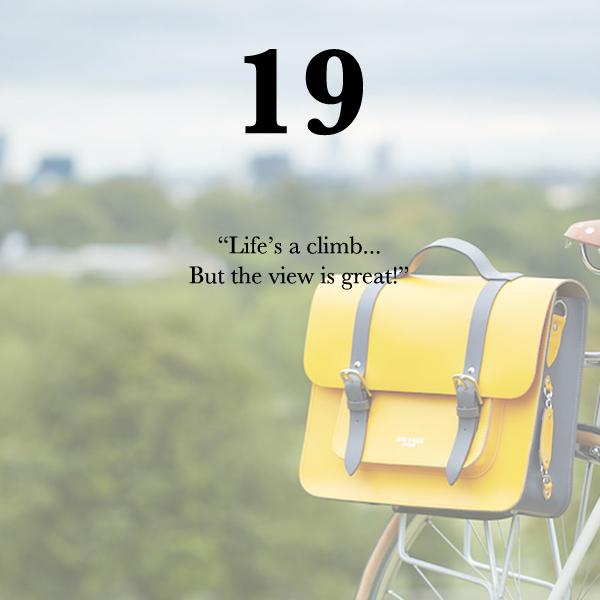Bradley bike bag on primrose hill