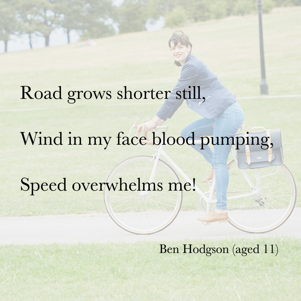 Baiku bike bag poetry 1