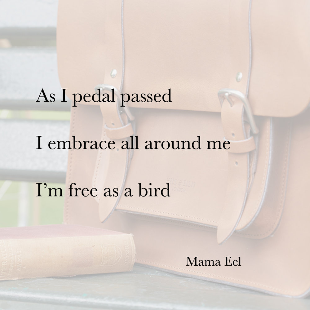 Baiku bike bag poetry