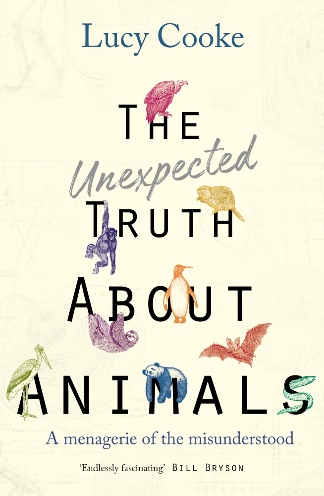 unexpected truth cover.jpg