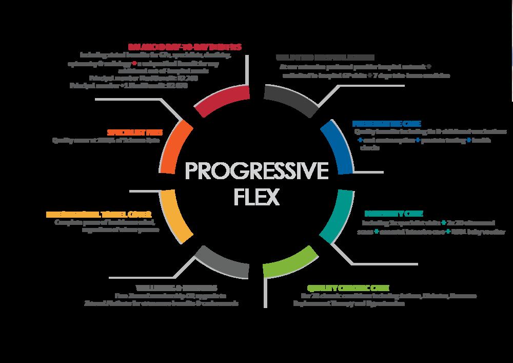 progressive flex usp
