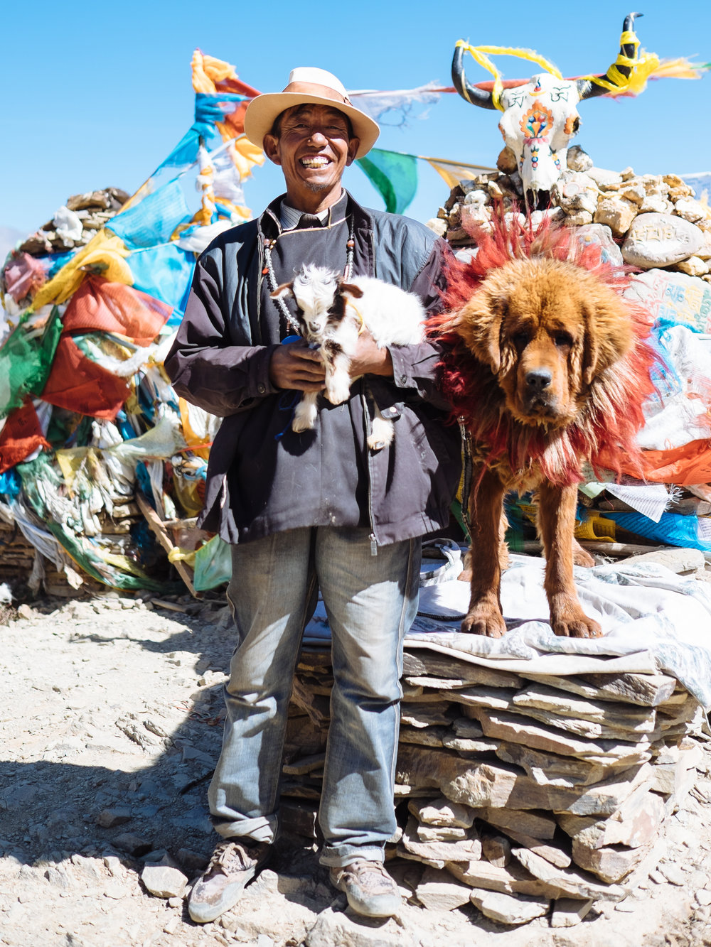Tibetan Mastiff & Owner