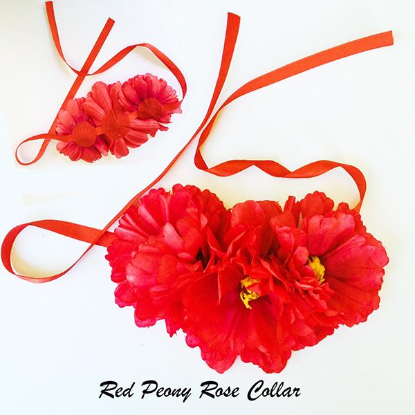 Red-Collar.jpg