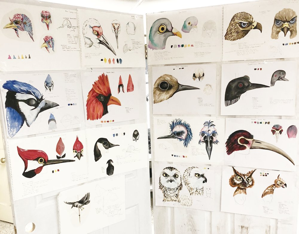 Designs for Birds