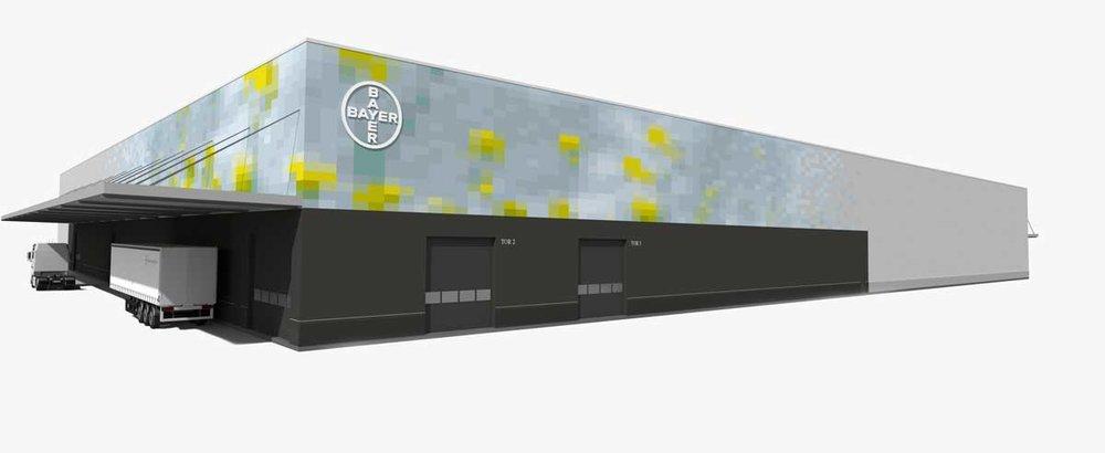 oilseed-web-02.jpg