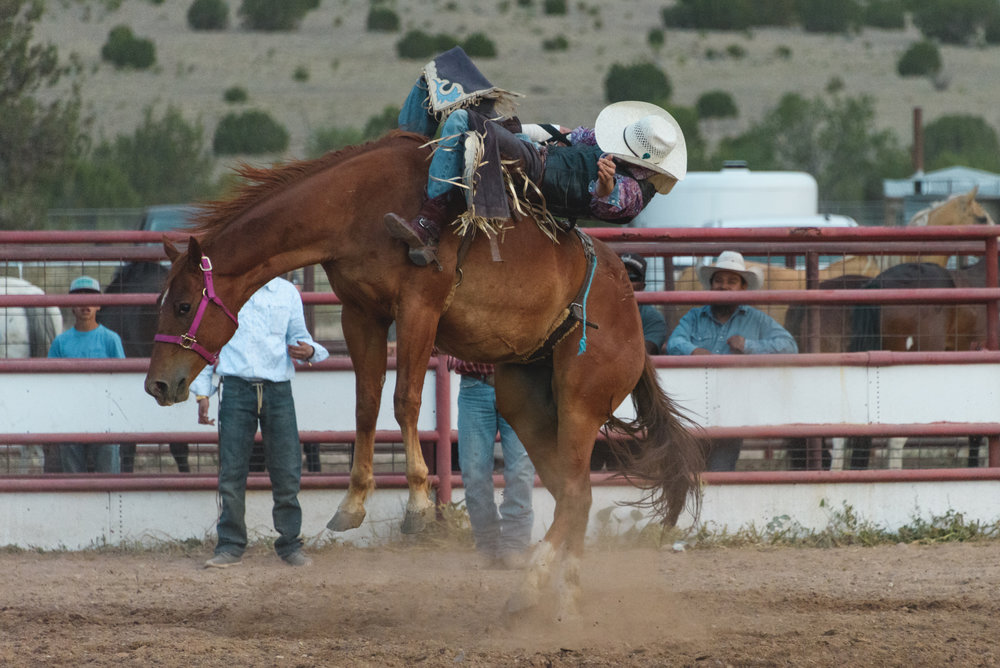 Rodeo_selects-4778.jpg