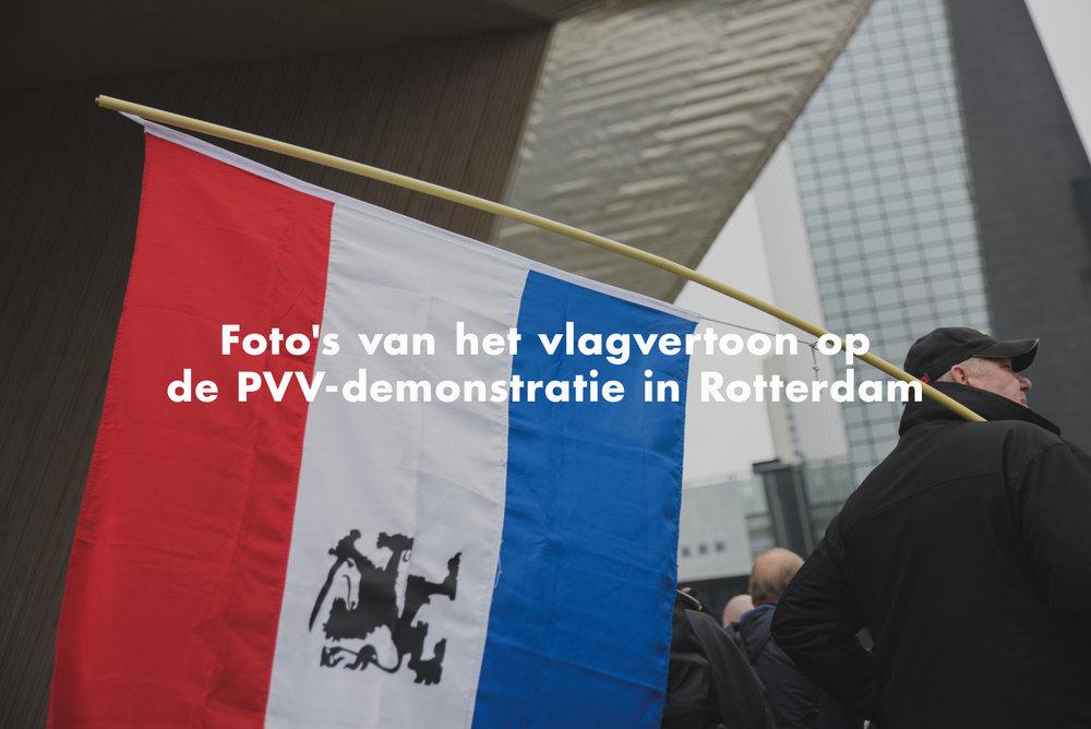 vice_flags.jpg