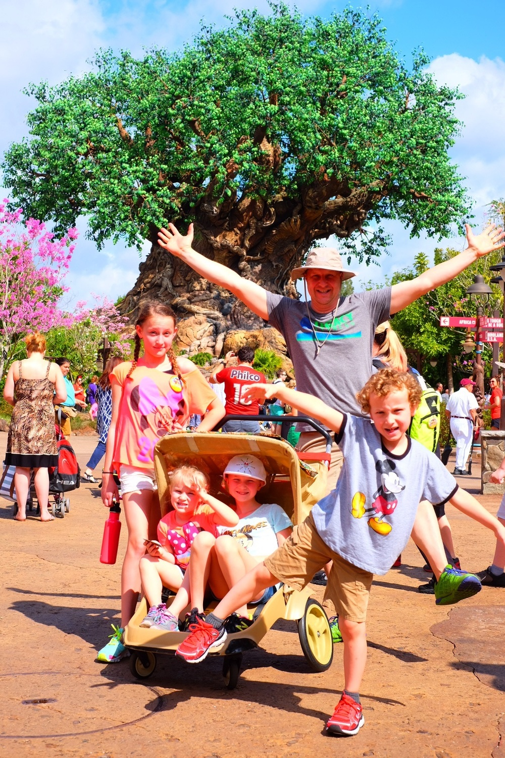 Tree of Life at Animal Kingdom