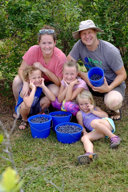 family berries