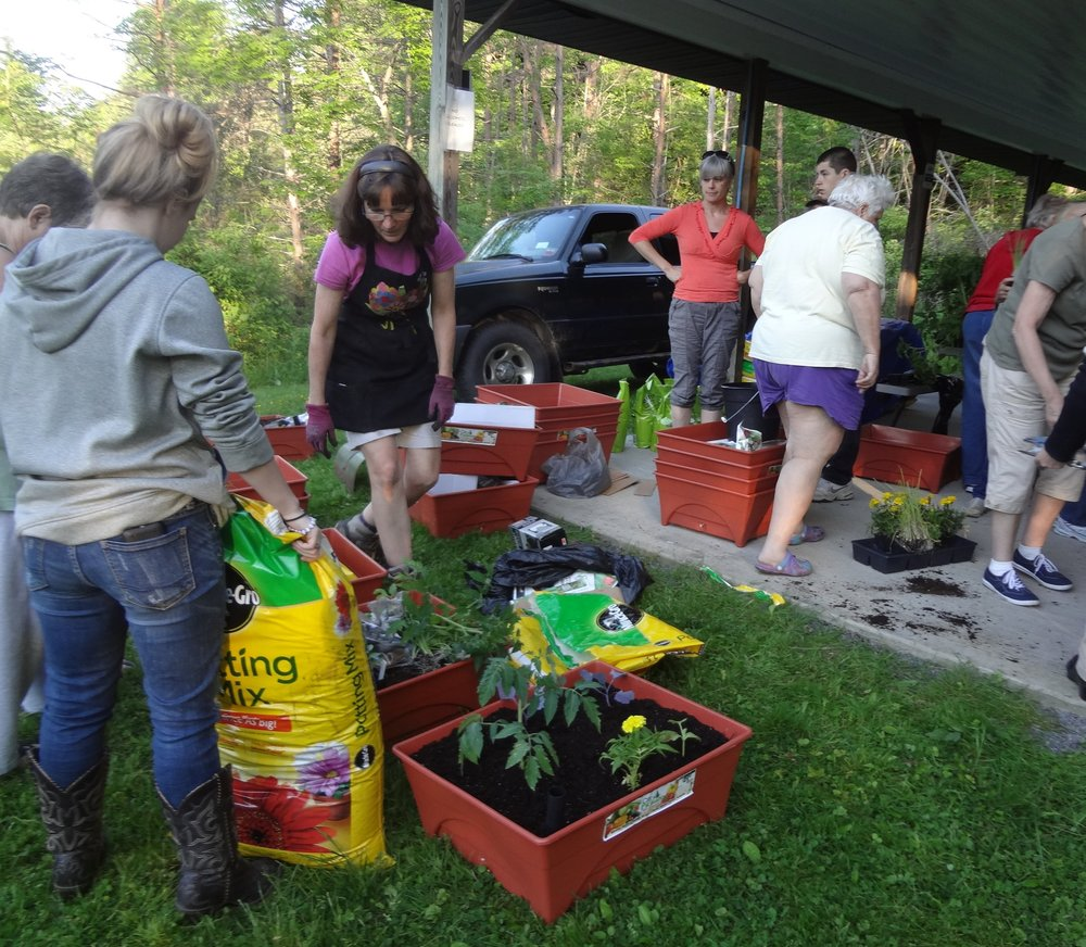 Newfield residents learn basic gardening techniques and pick up free gardening supplies. Picture: Chrys Gardener.