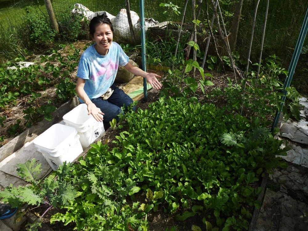 "Yayoi works in her garden in West Village. She said she gets her vegetables from both her garden and her CSA share. ""CSA...it really saved me,"" she said. ""I don't know how I'd do it without CSA and Healthy Food For All.  It's just so wonderful."""