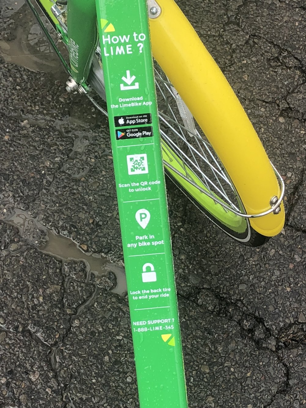 The steps to use a LimeBike are not only straight-forward, they are printed on the bikes themselves!  (Photo: Maggie McAden)