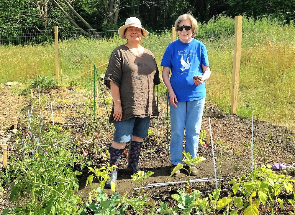 Magnolia Ariza-Nieto (left) and Pat Frazier in the community garden at the Cayuga Meadows Senior Apartments (photo: Liz Mahood)