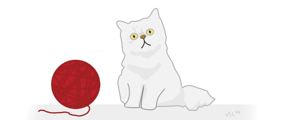 80. Geobreadbox Cat Video_BAll of Wool copy.jpg