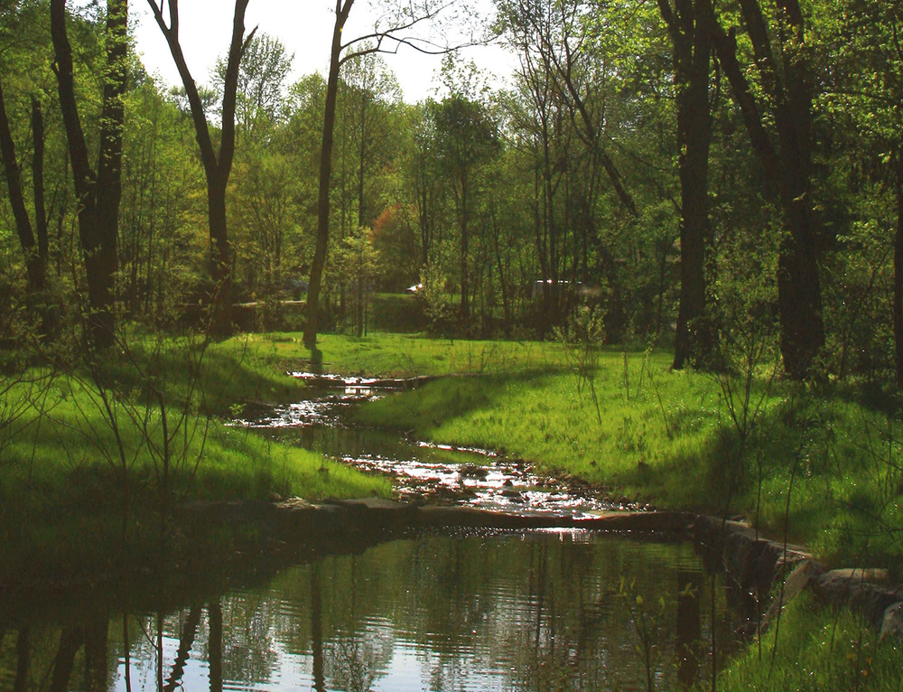 Northern Virginia Stream Restoration Bank  Reston, Virginia