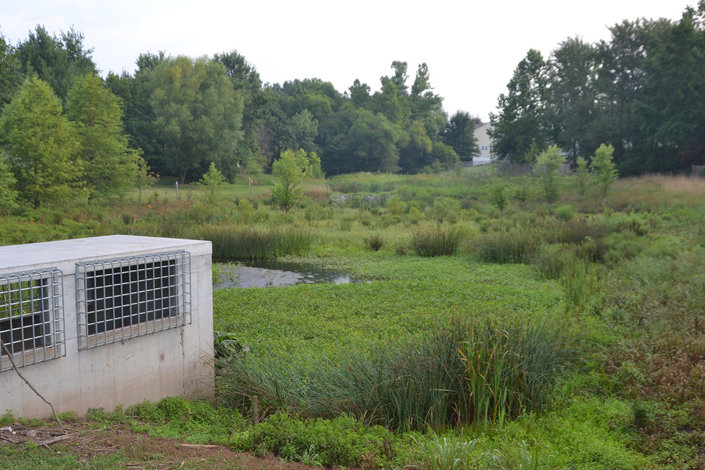 Sequoia Farms Stormwater Management Retrofit Design  Fairfax County, Virginia