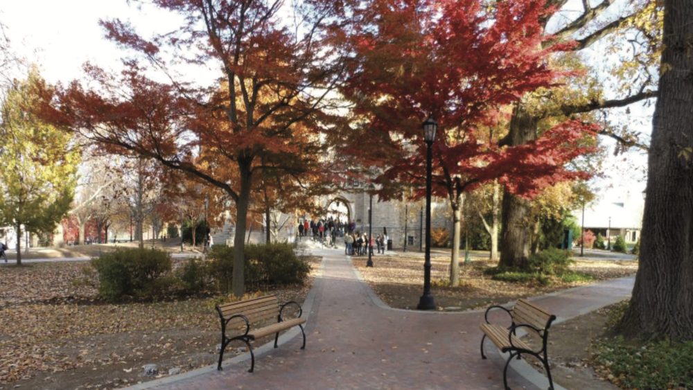 Villanova University campus-wide landscape renovation; tree preservation, and large tree transplanting services - Villanova, PA