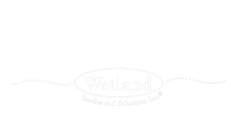 Wetland Studies and Solutions, Inc.