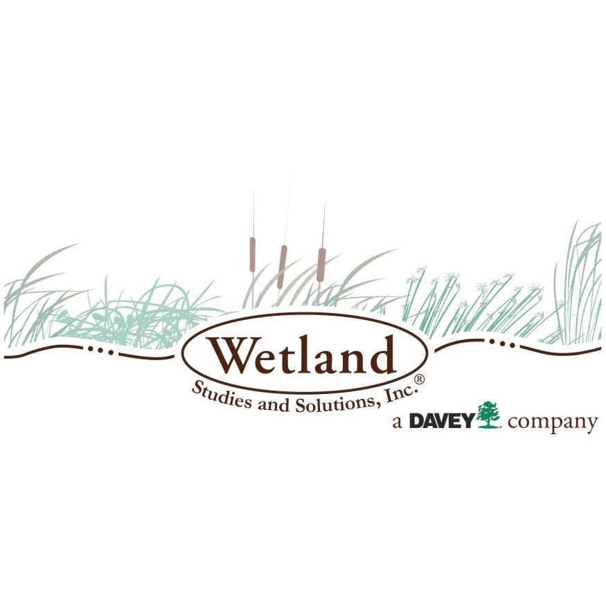 WETLAND STUDIES SOLUTIONS logo