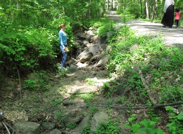 In the past, riprap was installed to stop the advancement of a headcut in this trail-side tributary