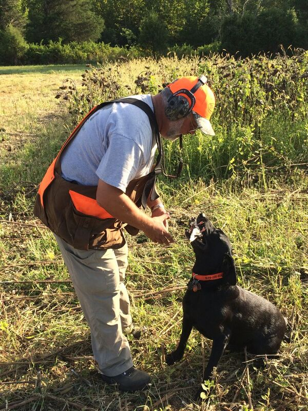 Mike Rolband takes a dove from his English lab, Boss.