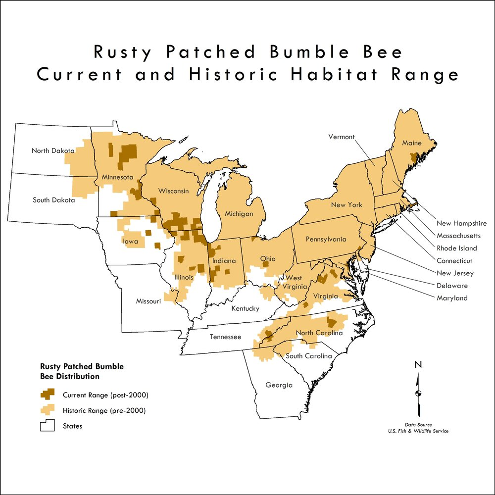 Map of current and historic habitat range for the rusty patched bumble bee