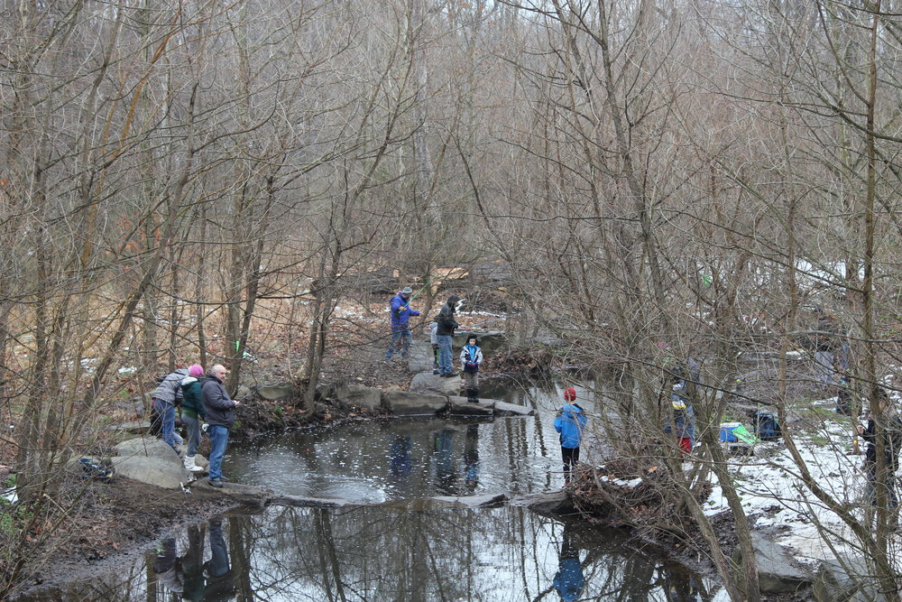 8th Reston Kids Trout Fishing Day, March 2018    This annual event along the restored Snakeden Branch   is a cooperative effort between WSSI, RA, the Virginia Department of Game and Inland Fisheries, Northern Virginia Trout Unlimited, and the Wildlife Foundation of Virginia.