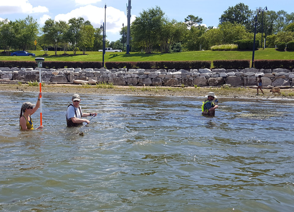 WSSI staff conducting survey near shore in shallow water