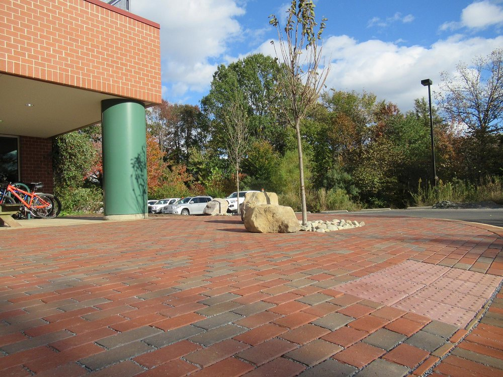 We incorporated CU-Soil ®  and trees into the new back patio at WSSI's main office.