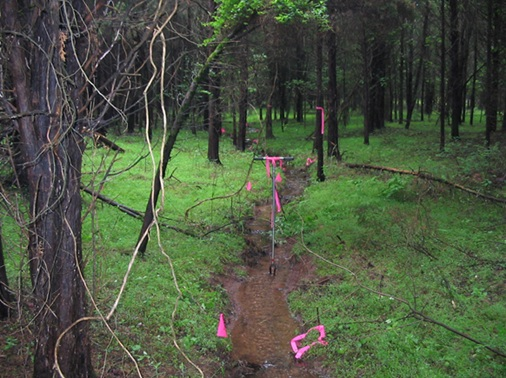 The proposed WOTUS definition excludes ephemeral streams like this one.