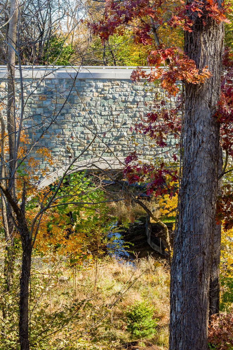 Bridge spanning the restored stream and floodplain (photo courtesy of Jacobs)