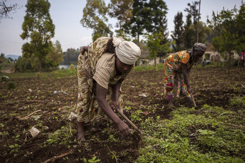 Non-Perennial Agriculture