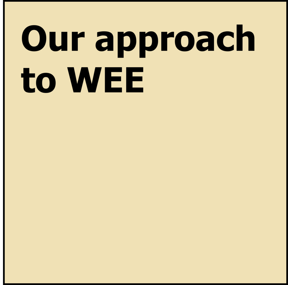 WEE - Approach.png