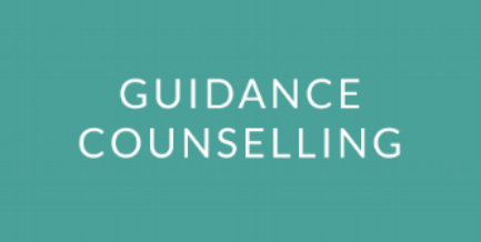 Our qualified and experienced guidance counsellors provide individual sessions for students and graduates seeking clarity on their future study and career options.   Learn More →