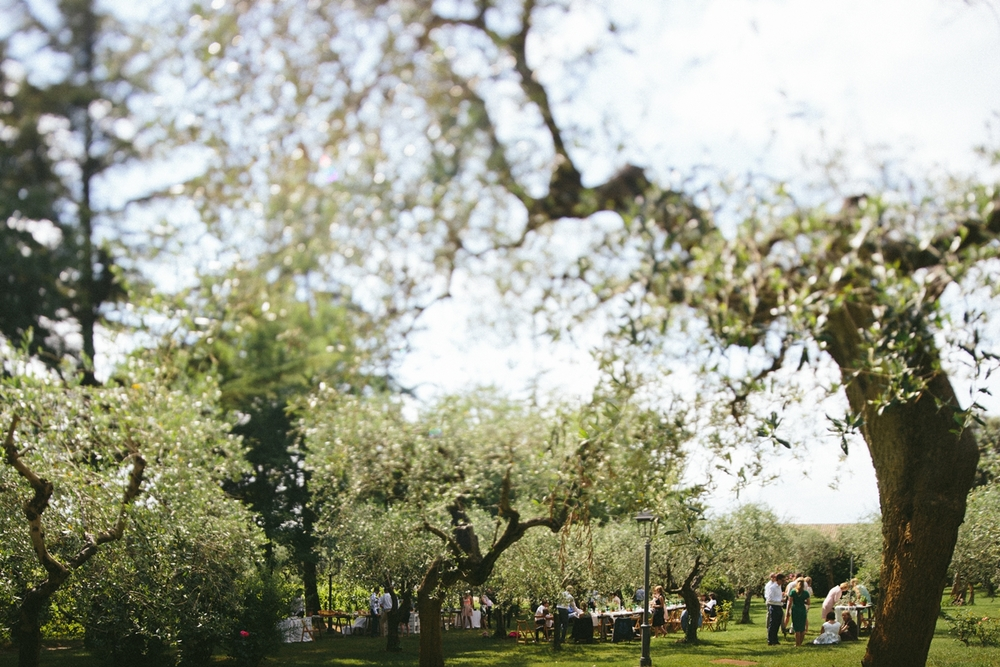olive-trees-wedding-lunch.jpg