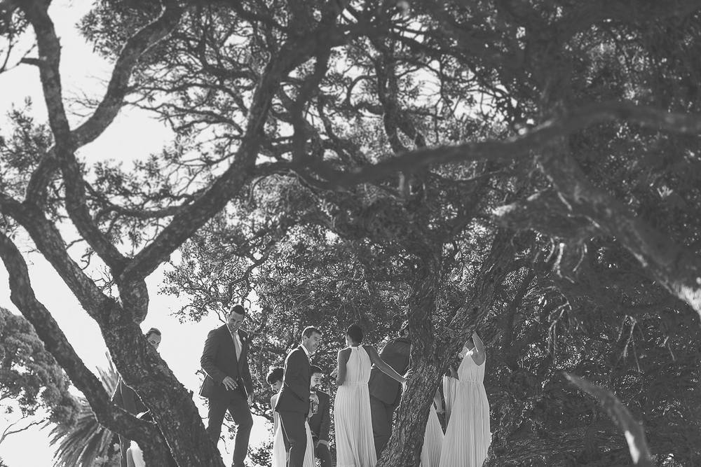 trees-bridal-party.jpg