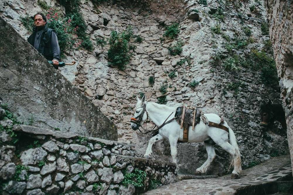 2-amalfi-coast-mule.jpg