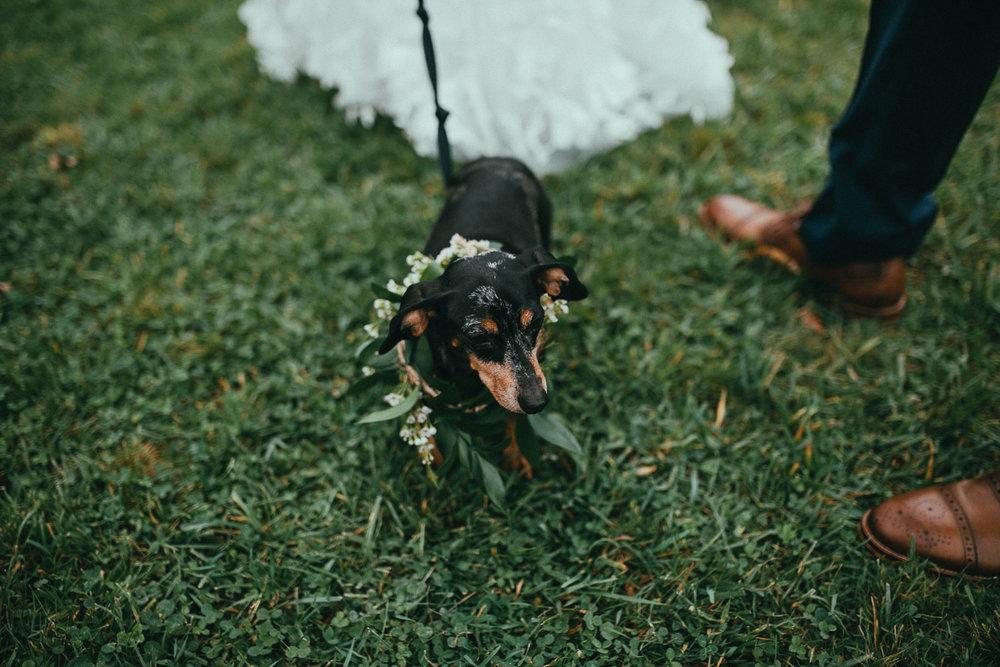 catskill-wedding-photographer (58).jpg